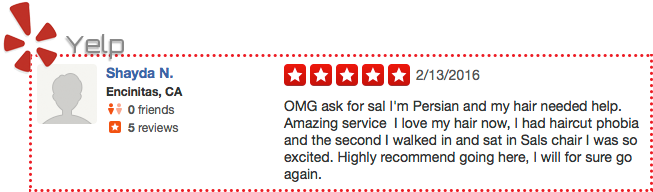 sal-yelp_review-feb16